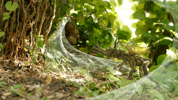 the-wood-dragon-the-spider-lair