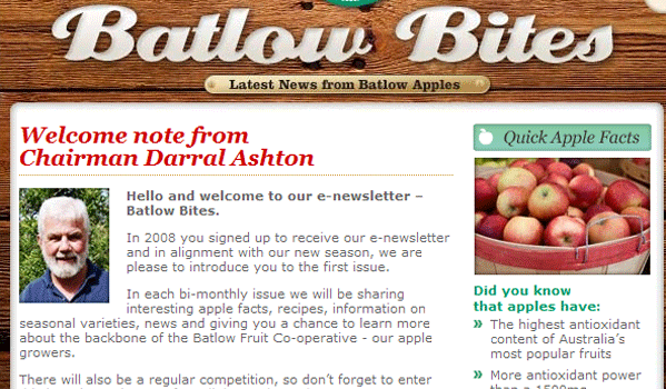 batlowbites 15 Clean And Effective Email / Newsletter Designs