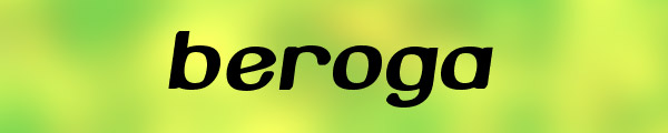 12 beroga Top 30 Free But Very Professional Fonts For Everyday Use In 2010