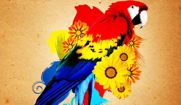parrot 20 Awesome Photo Manipulation Tutorials For GIMP
