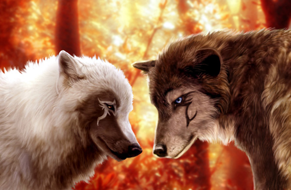 Forgiveness by MoonsongWolf Fantastic Nature And Animal Designs by MoonsongWolf   I.D. 27