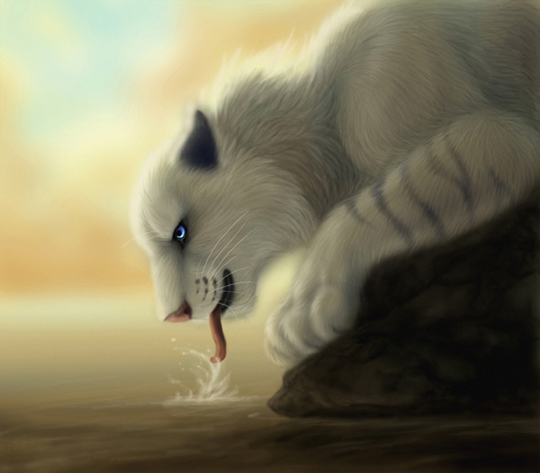 Mid morning Quench by MoonsongWolf Fantastic Nature And Animal Designs by MoonsongWolf   I.D. 27
