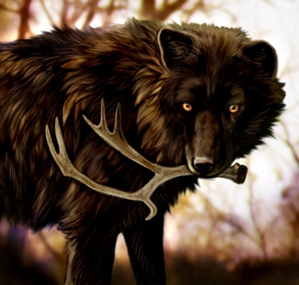 The Cycle of Being by MoonsongWolf Fantastic Nature And Animal Designs by MoonsongWolf   I.D. 27