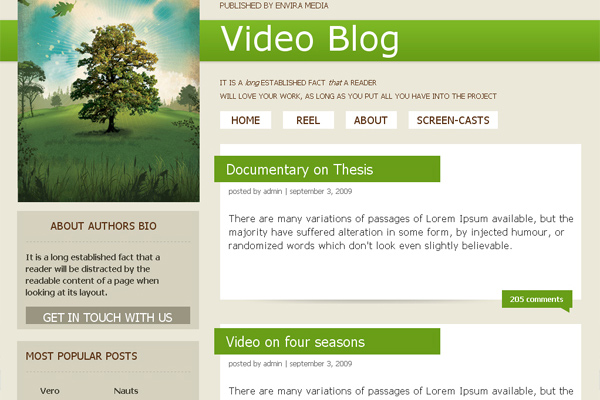 Video Blog free website template