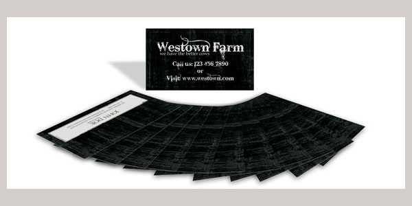 Business Card 009