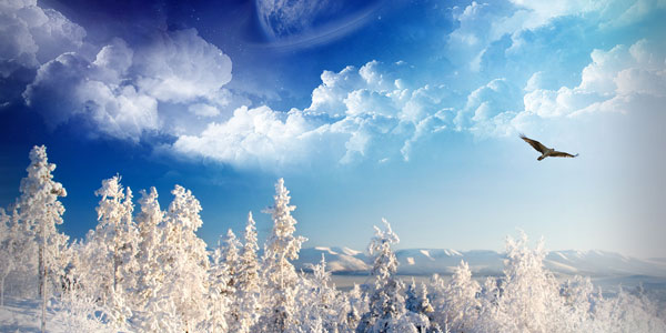 Winter wallpaper pack