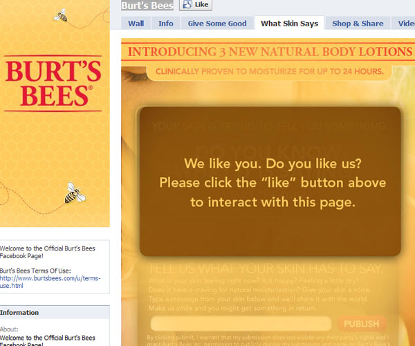 burtsbees 20 Top Well Designed Facebook Pages Design