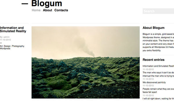 blogum free theme 25 Free Wordpress Minimal Portfolio Themes