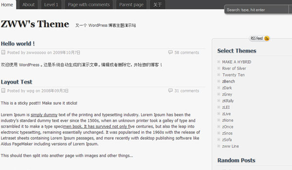 chinese theme 25 Free Wordpress Minimal Portfolio Themes