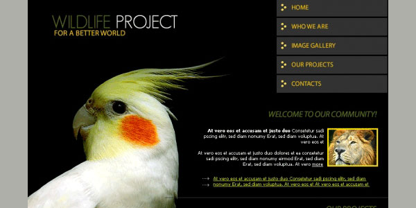 wildlife project template 35 Awesome Free PSD Templates
