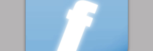FaceBook - Face File