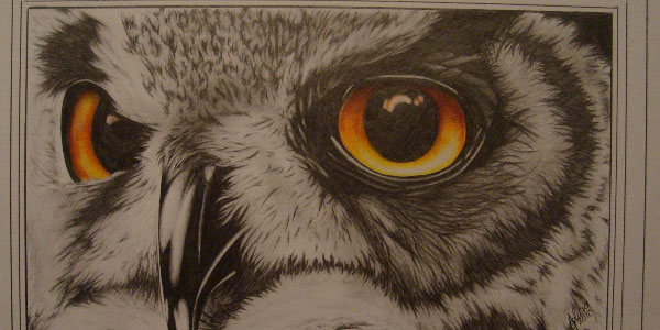 owl eye 50 Splendid Pencil Drawings