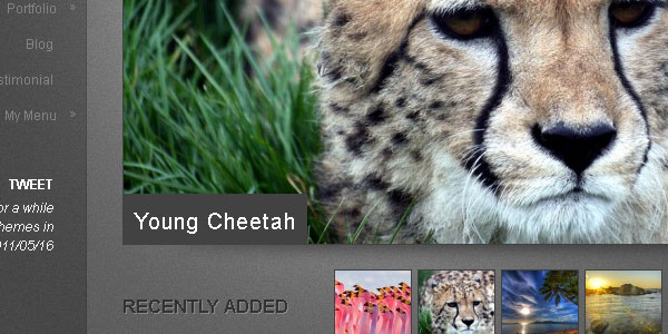 15 Top and Free Photography Website Templates   Free Photography ...