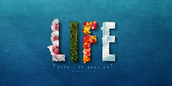 life 25 Widescreen Wallpapers