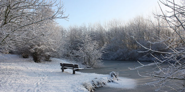 Winter art 3