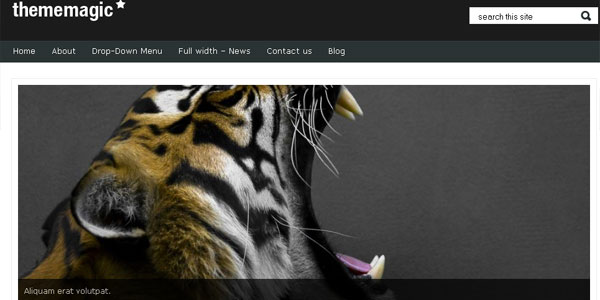 thememagic 20 Free WordPress 3.0 Themes