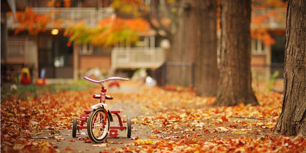 Tricycle wallpaper