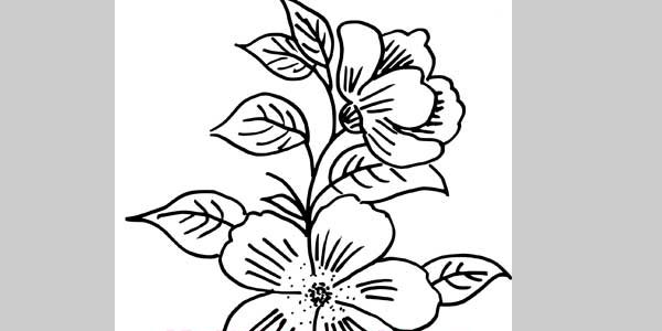 Flower Hand Embroidery Designs Free Download: 25 Beautiful Hand Made Designs