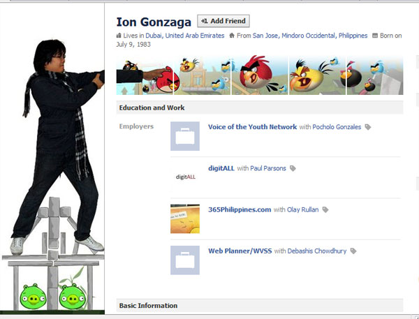 angry bird facebook profile 20 Truly Awesome Profile Design Inspirations