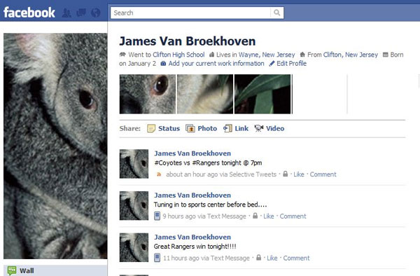 bird view facebook profile 20 Truly Awesome Profile Design Inspirations