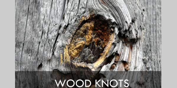Collection of 10 Wood Knots