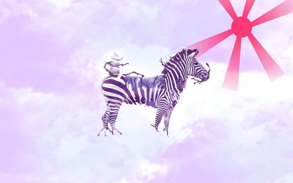 abstract zebra wallpaper 25 Zebra Wallpapers
