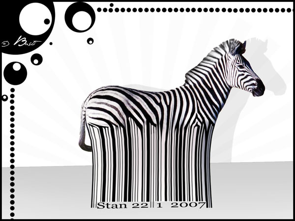 zebra wallpaper barcode 25 Zebra Wallpapers