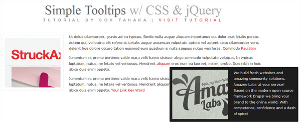 simple tooltip jquery 25 Handy jQuery Tutorials