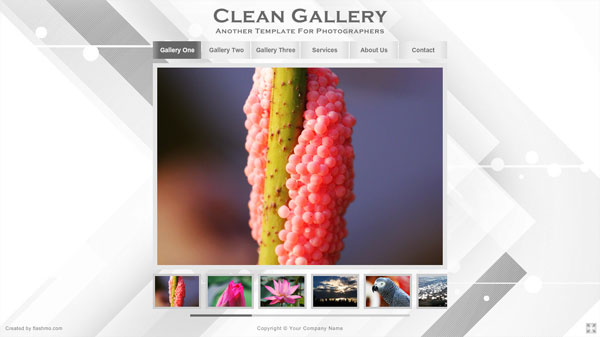 clean gallery 25 Awesome Flash Website Templates