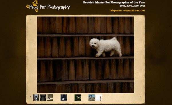 photography site 20 Top Photography Websites