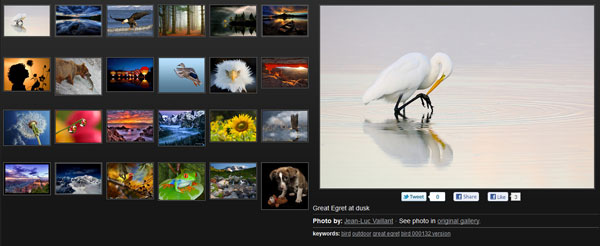 smugmug 20 Top Photography Websites