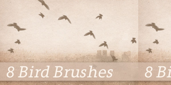 8 Flying Bird Brushes