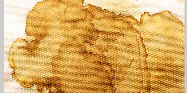 Coffee Stained Napkin