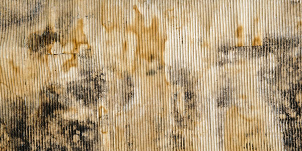 11 Old Dirty Cardboard Textures by Steve Foster