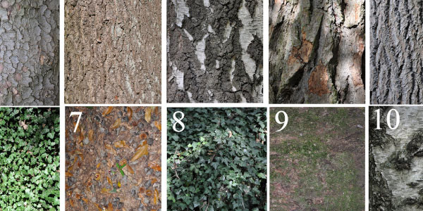 10 Free High Res Textures