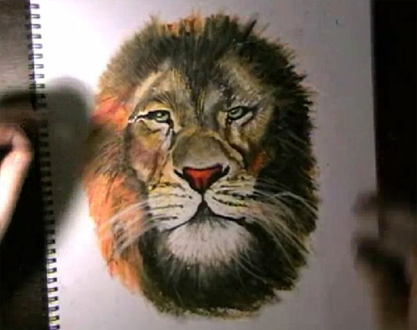 Lions Drawing