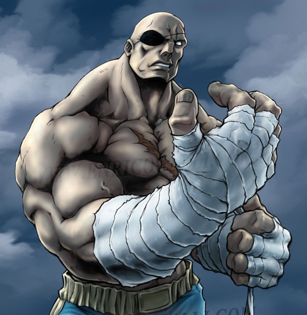 sagat 15 Street Fighter Characters Illustrations
