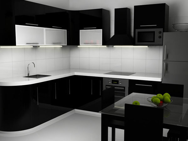 Black N White Kitchen Interior