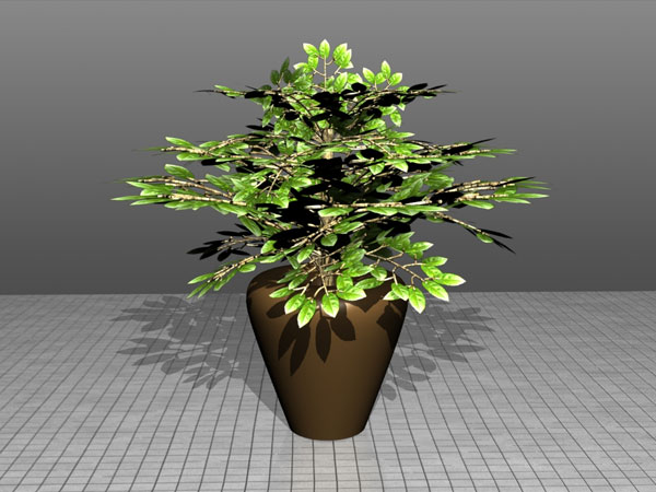 How To Model A Plant In A Pot