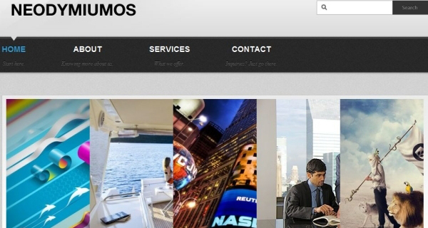 neodymiumos 35 Free Business WordPress Themes Which Are Awesome