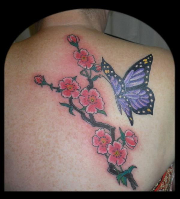 Smart Cover Up With Cherry Blossom Branch And A Lovely Butterfly