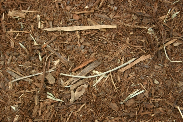 Wood Chips And Pebbles