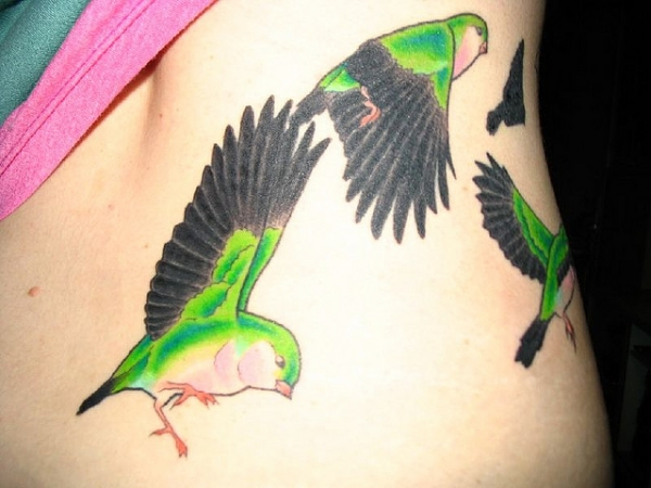 Colourful Flying Birds Tattoo