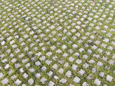 Patterned Grass Floor