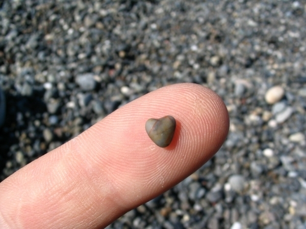 cute tiny rock heart 40 Lovely Pictures Of Hearts