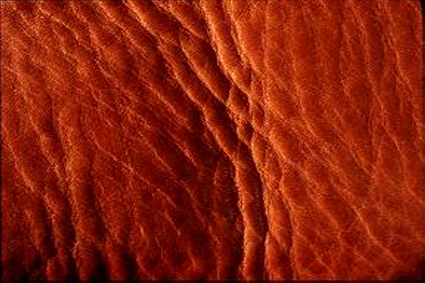 Red Leather Skin