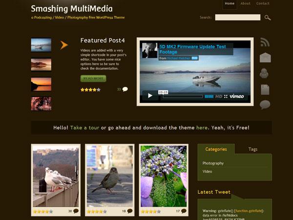 sarah neuber 12 Top Free WordPress Video Themes
