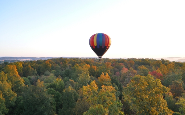 air balloon over the forest 25 Colorful Pictures of Balloons