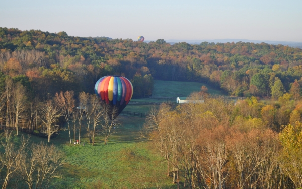 new york air balloon 25 Colorful Pictures of Balloons