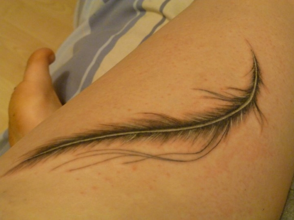 tender feather 25 Adorable Feather Tattoos